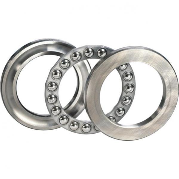 FAG NJ2317-E-M1  Cylindrical Roller Bearings #1 image